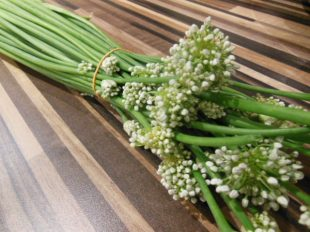 Sri Lankan spring onion flower